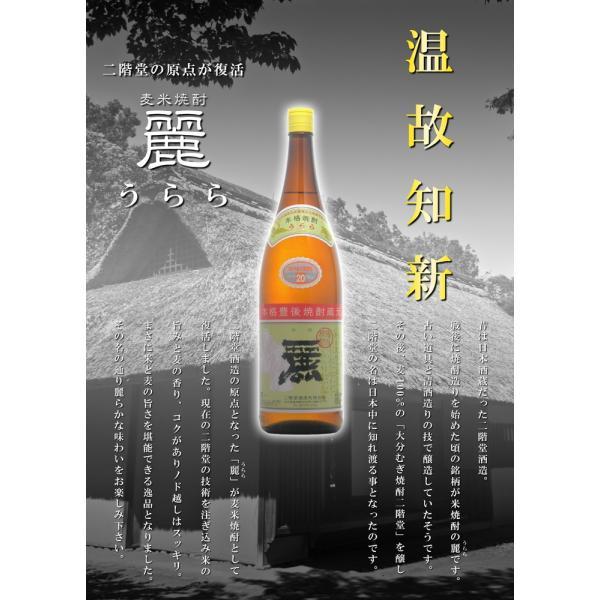 大分むぎ焼酎 麗〜うらら〜 20度1800ml 大分県 二階堂酒造|etoshin|02