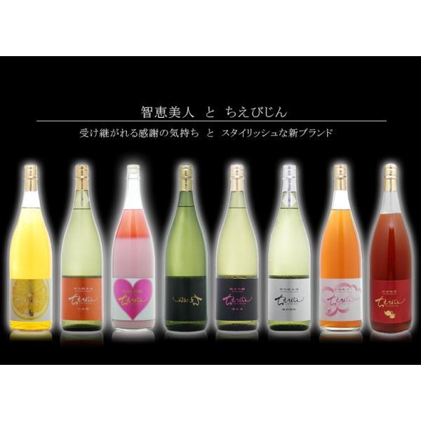 ちえびじん 純米酒 一度火入れ 720ml  大分県 中野酒造 レギュラー酒 etoshin 07