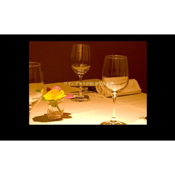ちえびじん 純米酒 一度火入れ 720ml  大分県 中野酒造 レギュラー酒 etoshin 08