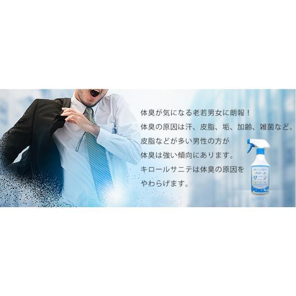 静岡大学発ベンチャー開発 キロール・サニテ 20L 白金ナノ配合 アルコールフリーで手荒れや過敏症の方におすすめのウイルス除菌|eu-bs|03
