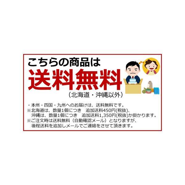 (200ml 18本)キッコーマン飲料 調製豆乳 200ml×18本(1ケース)(送料無料)旧紀文の豆乳 キッコーマン豆乳|ever-shop|02