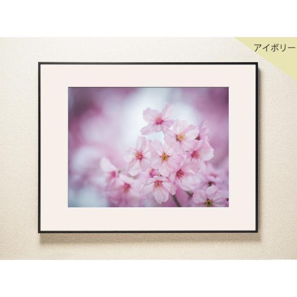 【片岡正一郎】オリジナルプリント「桜」No.7 A3額付き exa-photo