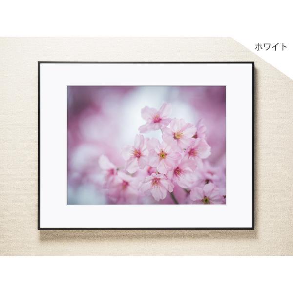 【片岡正一郎】オリジナルプリント「桜」No.7 A3額付き exa-photo 02
