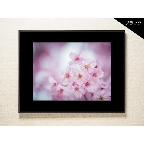 【片岡正一郎】オリジナルプリント「桜」No.7 A3額付き exa-photo 03