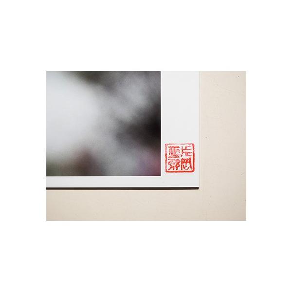 【片岡正一郎】オリジナルプリント「桜」No.7 A3額付き exa-photo 05