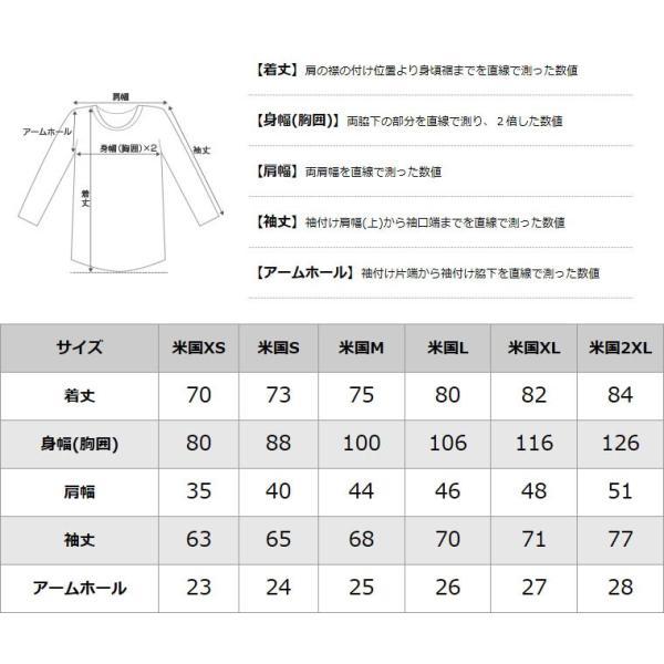 チャンピオン ライフ Tシャツ 長袖 レディース メンズ 大きいサイズ USAモデル|ブランド Champion|f-box|08