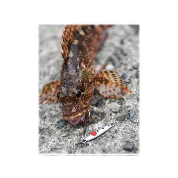 ジャングルジム ジャコイチ 1.5g 86 プランクトンスポット 207293