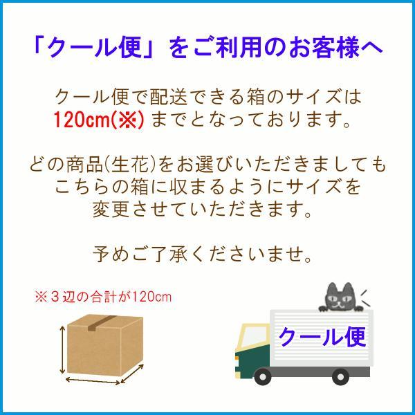 クール便での配送をご希望の場合は、こちらもご購入下さい f-hanasyou 02