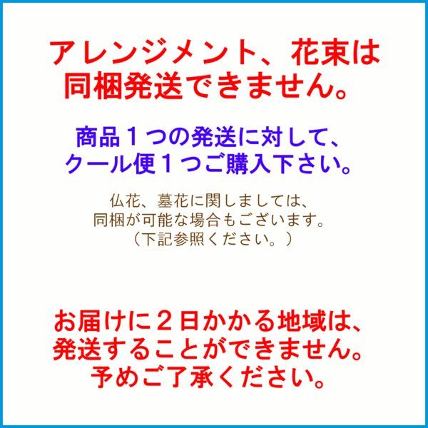 クール便での配送をご希望の場合は、こちらもご購入下さい f-hanasyou 03