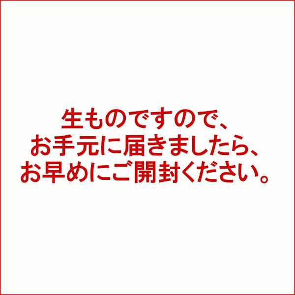 「正月 卯杖(うづえ)Sサイズ」お正月飾り 厄除け 正月飾り花 年始 花 迎え花 飾り花 正月飾り 11/30まで早割|f-hanasyou|08