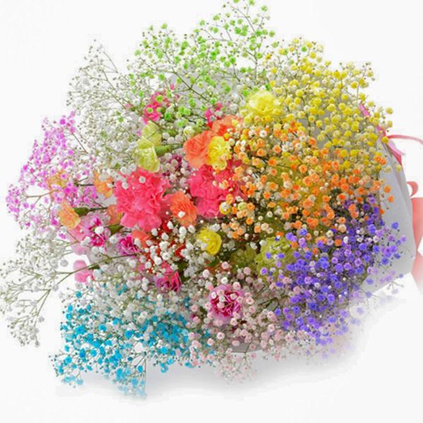 誕生日 花束 プレミアムスマイルブーケ かすみ草 カーネーション |f-iwai