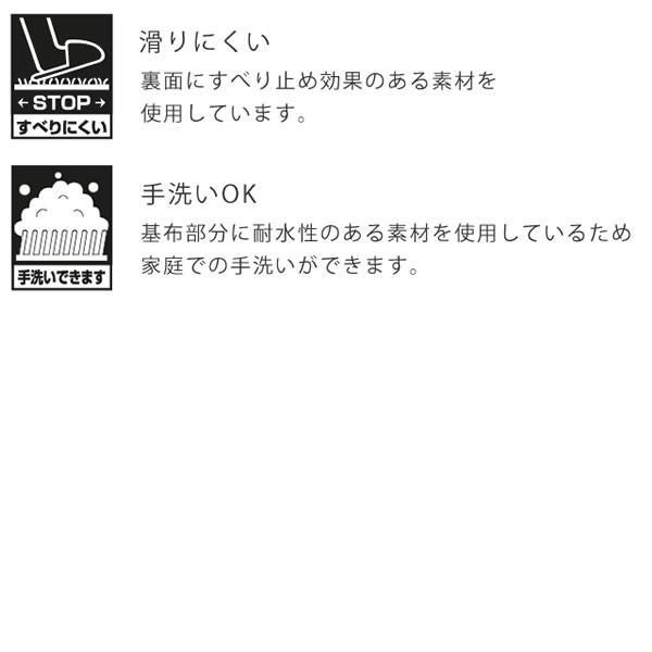 マット ラグ マイクロファイバーマット 50×80cm プレーベル ボニー ラグ カーペット すべりにくい 手洗い ラグ 玄関マット|f-news|02