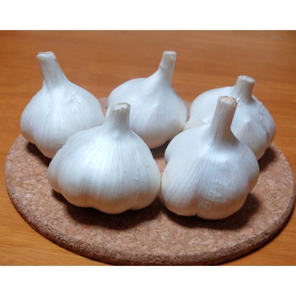 業務用 青森産新物にんにく A級品 Lサイズ 10kg 国産ニンニク|f-oishii