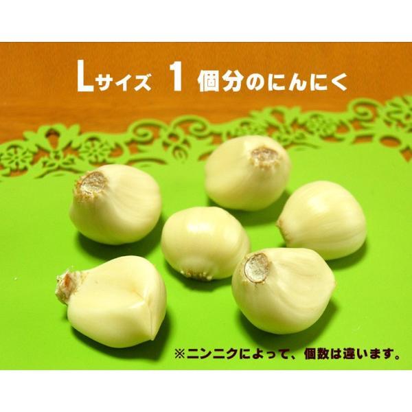 業務用 青森産新物にんにく A級品 Lサイズ 10kg 国産ニンニク|f-oishii|03