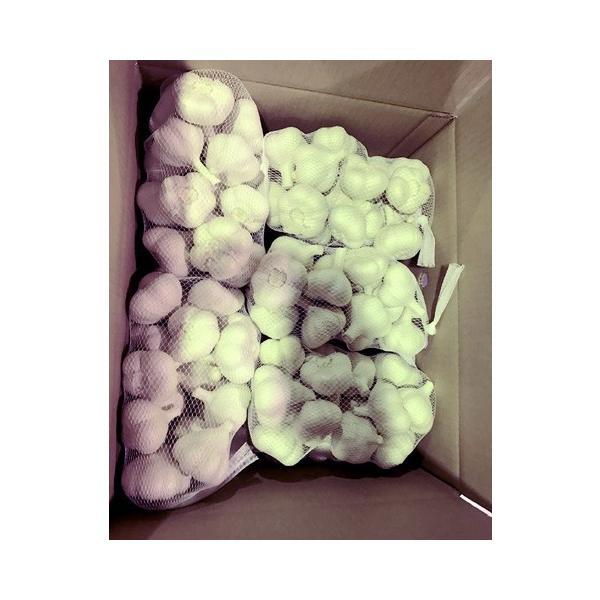 送料無料!業務用 青森産新物にんにく A級品 Lサイズ 10kg 国産ニンニク 送料込|f-oishii|06