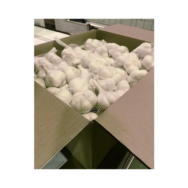 送料無料!業務用 青森産新物にんにく A級品 Lサイズ 10kg 国産ニンニク 送料込|f-oishii|07