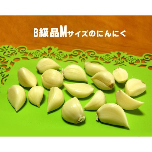 送料無料!業務用 青森産新物にんにく B級品 Mサイズ 10kg 国産 送料込|f-oishii|02