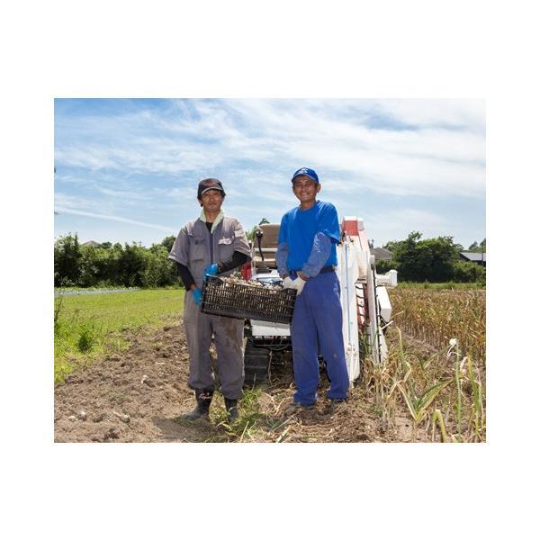 送料無料! 業務用 九州産乾燥にんにくチップ 5kg 国産ニンニク|f-oishii|07