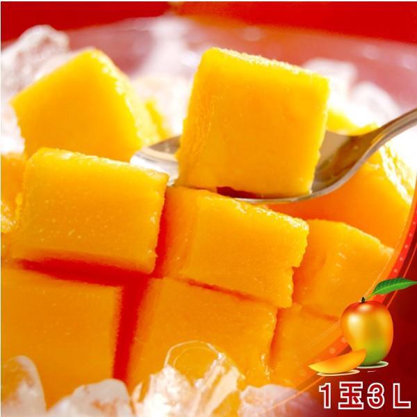 全国送料無料! 農家直送 大隈農園の完全無農薬・有機栽培 宮崎完熟マンゴー(Mango) 1玉3L 化粧箱|f-oishii