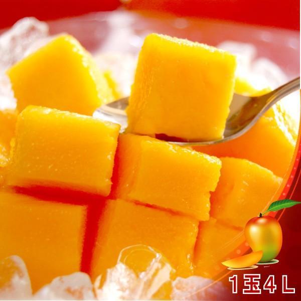 全国送料無料! 農家直送 大隈農園の完全無農薬・有機栽培 宮崎完熟マンゴー(Mango) 1玉4L 化粧箱|f-oishii