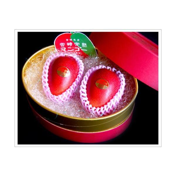 全国送料無料! 農家直送 大隈農園の完全無農薬・有機栽培 宮崎完熟マンゴー(Mango) 2玉2L 化粧箱|f-oishii|03