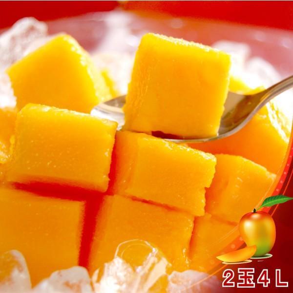 全国送料無料! 農家直送 大隈農園の完全無農薬・有機栽培 宮崎完熟マンゴー(Mango) 2玉4L 化粧箱|f-oishii