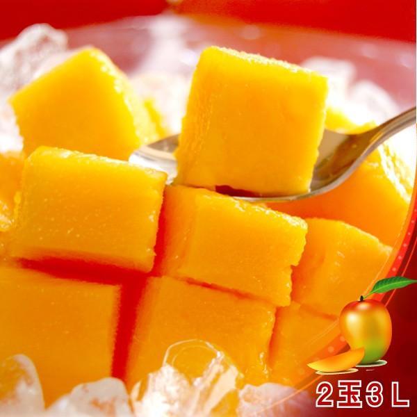全国送料無料! 農家直送 大隈農園の完全無農薬・有機栽培 宮崎完熟マンゴー(Mango) 2玉3L 化粧箱|f-oishii