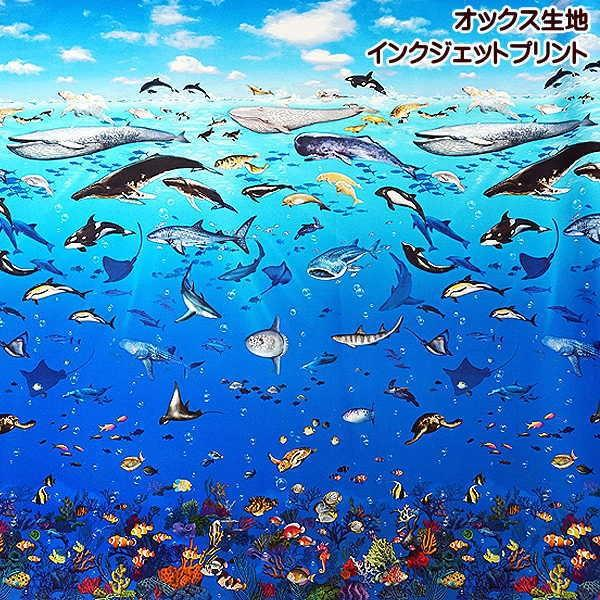 オックス 生地 ラッセン風 海の動物 クジラ イルカ シャチ ウミガメ ニモ インクジェット プリント 手芸|fairy-lace