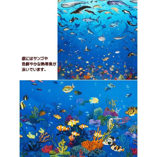 オックス 生地 ラッセン風 海の動物 クジラ イルカ シャチ ウミガメ ニモ インクジェット プリント 手芸|fairy-lace|03