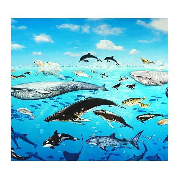 オックス 生地 ラッセン風 海の動物 クジラ イルカ シャチ ウミガメ ニモ インクジェット プリント 手芸|fairy-lace|05