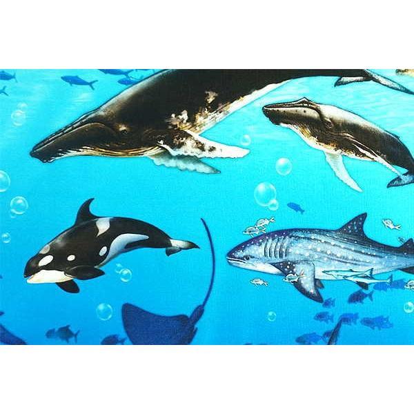 オックス 生地 ラッセン風 海の動物 クジラ イルカ シャチ ウミガメ ニモ インクジェット プリント 手芸|fairy-lace|06