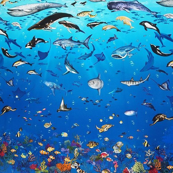 オックス 生地 ラッセン風 海の動物 クジラ イルカ シャチ ウミガメ ニモ インクジェット プリント 手芸|fairy-lace|07