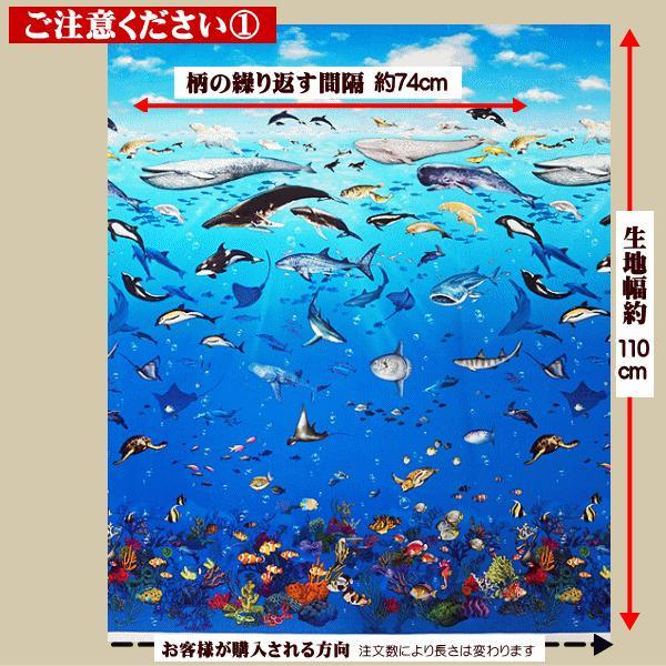 オックス 生地 ラッセン風 海の動物 クジラ イルカ シャチ ウミガメ ニモ インクジェット プリント 手芸|fairy-lace|09