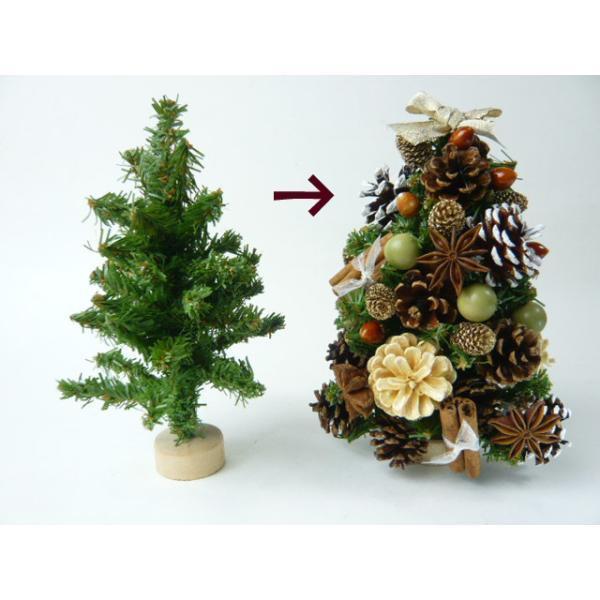 松かさ アソート 3〜6cm(大袋50個入)24207-000 松ぼっくり クリスマス 天然素材|familiamia|03