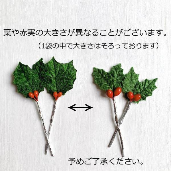 クリスマスケーキ 飾り  オーナメント FX-2 緑のヒイラギ (10本入) familiamia 03