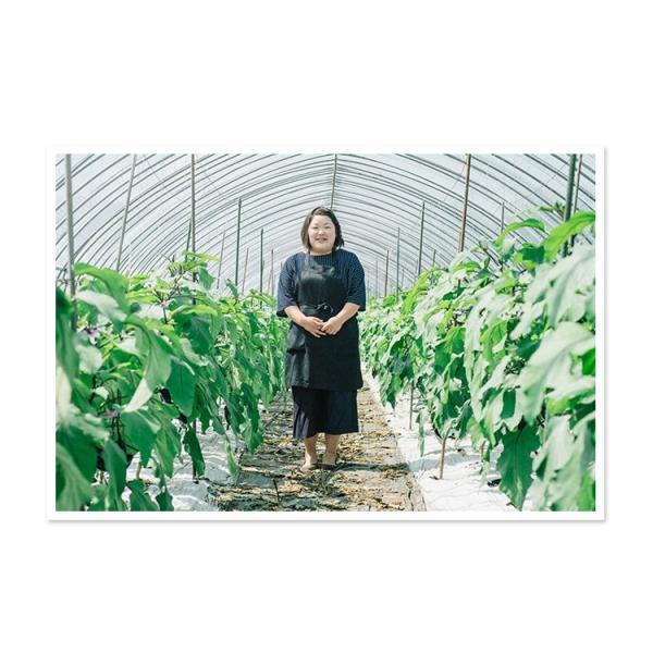 南阿蘇のベジジャムーヒゴムラサキー ジャム ギフト プレゼント お取り寄せグルメ ナス なす ナスジャム  お中元 手作り 茄子|familytree|04