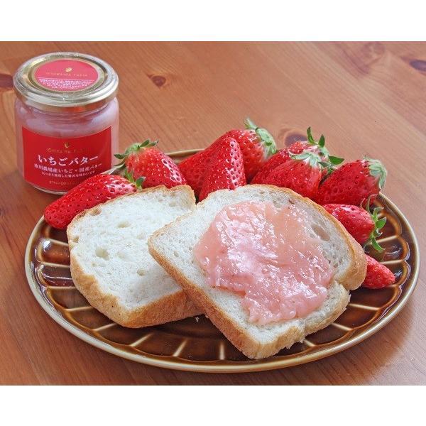 【ギフト】市川農場いちごバター190g×2個セット|farm-ichikawa|11