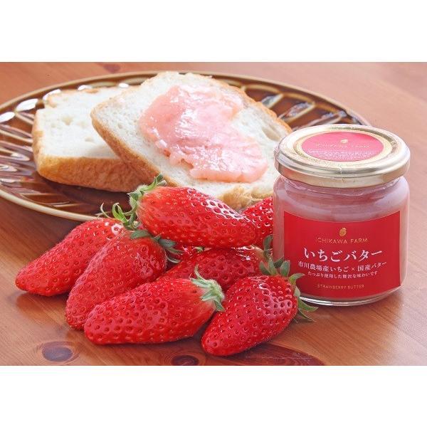 【ギフト】市川農場いちごバター190g×2個セット|farm-ichikawa|10