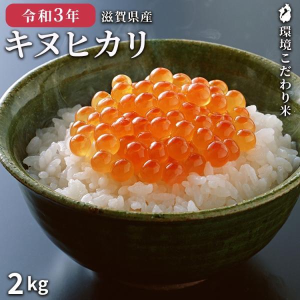 キヌヒカリ 2kg 米 令和2年産 美味しい近江米 白米 玄米