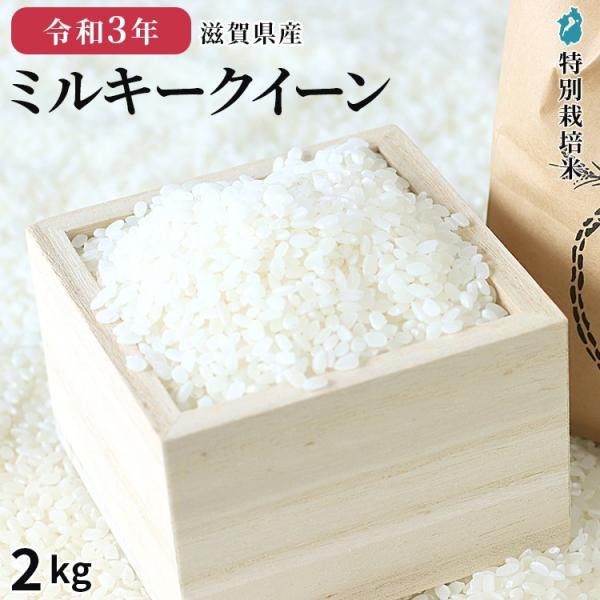ミルキークイーン 2kg 米 令和2年産 美味しい 近江米 白米 玄米 特別栽培米