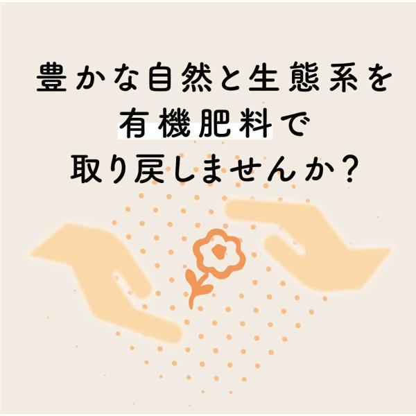 米5kg お米 新米 コシヒカリ 玄米 白米 選べる 平成30年産 送料無料 新潟県産 タイムセール|farmex|03