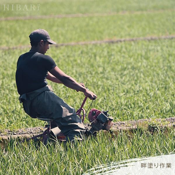 ギフト用  新潟県産米 コシヒカリ お米 5kg×2袋 10kg 米 玄米 白米 選べる 平成30年産 送料無料 タイムセール ギフト|farmex|12