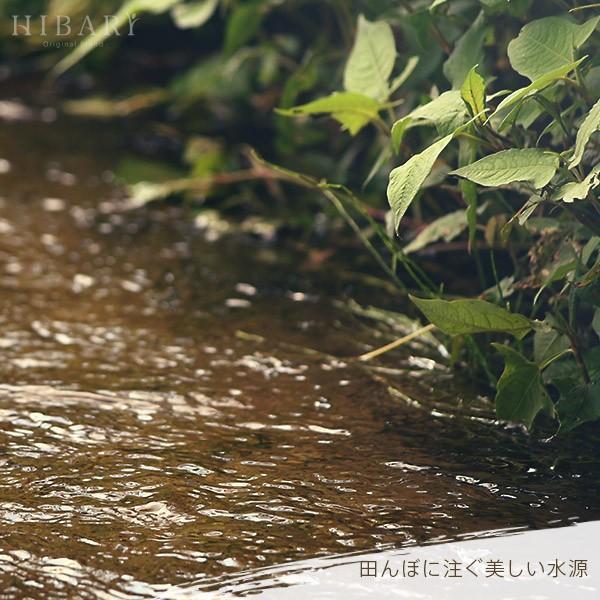 ギフト用  新潟県産米 コシヒカリ お米 5kg×2袋 10kg 米 玄米 白米 選べる 平成30年産 送料無料 タイムセール ギフト|farmex|13