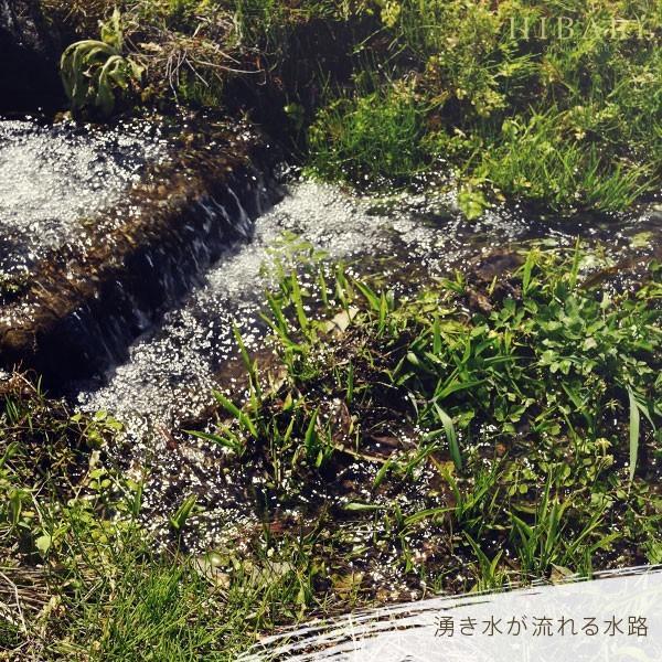 コシヒカリ 5kg 米 お米 玄米 平成30年産 送料無料 新潟県産 タイムセール スペシャルセレクト|farmex|14