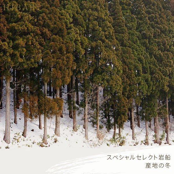 米 お試し新潟県産こしひかりスペシャルセレクトHIBARI お米 30年産  こしひかり 米 産地限定 900g 選べる 白米 玄米 産地直送 farmex 18