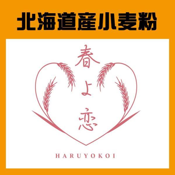 ヤマチュウ(山本忠信商店)「春よ恋100%」北海道産パン用小麦粉 1kg