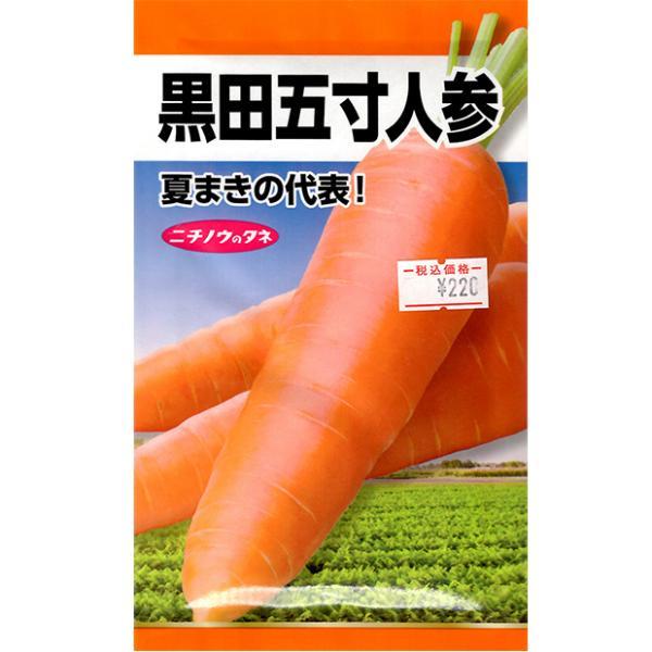 日本農産 野菜の種/種子 にんじん ニンジン 黒田五寸人参 種 (レターパックライト発送 全国一律370円)21580