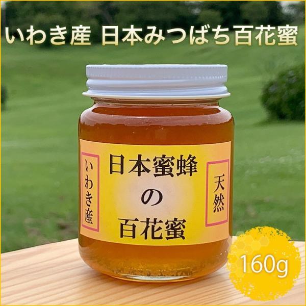 いわき産 日本みつばち百花蜜 160g|fazenda