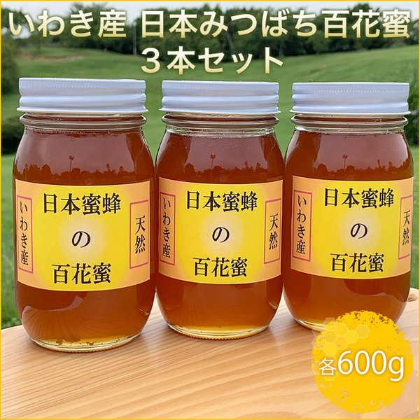 いわき産 日本みつばち百花蜜600g3本セット ふくしまプライド。体感キャンペーン(その他)|fazenda