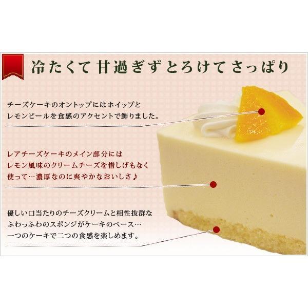 チーズケーキ レアチーズケーキ 業務用 家庭用 国産|fbcreate|04